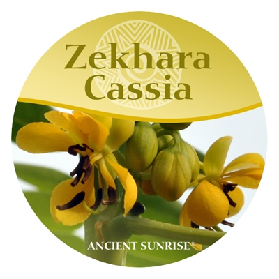 Ancient Sunrise Zekhara Cassia