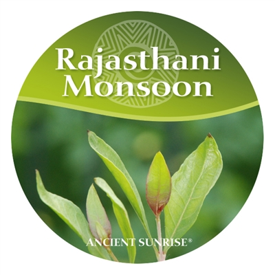 Ancient Sunrise Rajasthani Monsoon Henna