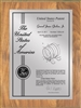 "Patent Plaques Custom Wall Hanging Contemporary Patent Plaque - 9"" x 12"" Silver and Oak."