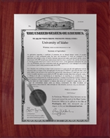 "Patent Plaques Custom Wall Hanging Traditional PVP Plaque - 8"" x 10"" Silver and Cherry."