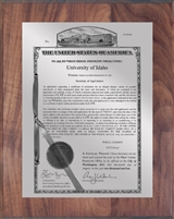 "Patent Plaques Custom Wall Hanging Traditional PVP Plaque - 8"" x 10"" Silver and Walnut."
