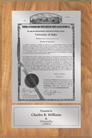 "Patent Plaques Custom Wall Hanging Traditional PVP Plaque - 8"" x 12"" Silver and Oak."