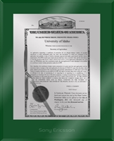 "Patent Plaques Custom Wall Hanging Ultramodern PVP Plaque - 10.5"" x 13"" Silver and Green Acrylic."