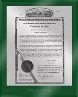 "Patent Plaques Custom Wall Hanging Ultramodern PVP Plaque - 8"" x 10"" Silver and Green Acrylic."