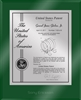 "Patent Plaques Custom Wall Hanging Ultramodern Contemporary Patent Plaque - 10.5"" x 13"" Silver and Green Acrylic."