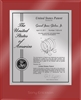 "Patent Plaques Custom Wall Hanging Ultramodern Contemporary Patent Plaque - 10.5"" x 13"" Silver and Red Acrylic."