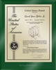 "Patent Plaques Custom Wall Hanging Ultramodern Contemporary Patent Plaque - 8"" x 10"" Gold and Green Acrylic."