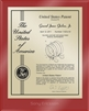 "Patent Plaques Custom Wall Hanging Ultramodern Contemporary Patent Plaque - 8"" x 10"" Gold and Red Acrylic."
