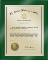 "Patent Plaques Custom Wall Hanging Ultramodern Traditional Trademark Plaque - 10.5"" x 13"" Gold and Green Acrylic."