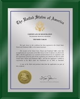 "Patent Plaques Custom Wall Hanging Ultramodern Traditional Trademark Plaque - 10.5"" x 13"" Silver and Green Acrylic."