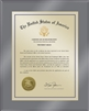 "Patent Plaques Custom Wall Hanging Ultramodern Traditional Trademark Plaque - 8"" x 10"" Gold and Translucent Grey Acrylic."