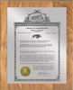 "Patent Plaques Custom Wall Hanging Vintage Trademark Plaque - 10.5"" x 13"" Silver and Oak."