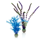 BiOrb Blue Purple Plant Pack