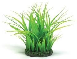 BiOrb Easy Plant Grass Ring, Small