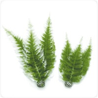 BiOrb Decor Winter Fern Plant Pack, Medium Decoration