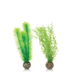 BiOrb Green Feather Fern Small