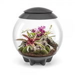 BiOrb Air Grey 60L Terrarium