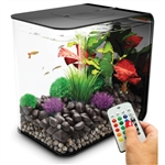 BiOrb Flow 15 Liter Black Aquarium with MCR Lighting
