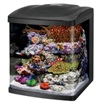 Coralife Size 16 LED BioCube Aquarium