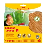 Sera Catappa Leaves M