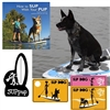 Great gift for Sup paddle boarders and their dogsgr