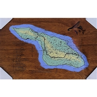 Catalina Map 1924. Hand pulled silkscreen  map of Catalina Island, circa 1924. Great topo map with trailhead listings, Blue, Mint Green and yellow acrylic paint. Small silkscreened flying fish, upper right. Handpulled silkscreen on Birch wood panel....
