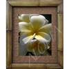 """Daybreak"" Plumeria Art Print. Beautiful  photogrpah of a large white plumeria and a small blossom beneath.  Matted in a Natural Grass Mat and framed in a handmade Natural Bamboo Frame. Bamboo Frame is hand sanded and stained twice. Made in..."