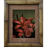 """Red Plumeria's"" Plumeria Art Print. Beautiful photogrpah of two red plumeria's, antique feel.  Matted in a Natural Grass Mat and framed in a handmade Natural Bamboo Frame. Bamboo Frame is hand sanded and stained twice. Made in California, USA...."