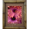 """Holding Hands"" floral Art Print. Matted in a Natural Grass Mat and framed in a handmade Natural Bamboo Frame. Bamboo Frame is hand sanded and stained twice. Made in California, USA. Dimensions; Print 11"" x 14"", Natural Grass Mat 16"" x 20"", Natural..."