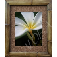 """Close Up"" Plumeria Art Print. Beautiful photogrpah of a white plumeria with bud beneath.  Matted in a Natural Grass Mat and framed in a handmade Natural Bamboo Frame. Bamboo Frame is hand sanded and stained twice. Made in California, USA...."
