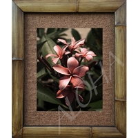 """Plumeria Bouquet"", Plumeria Art Print. Beautiful photogrpah of a bouquet of pink Pluemria's.  Matted in a Natural Grass Mat and framed in a handmade Natural Bamboo Frame. Bamboo Frame is hand sanded and stained twice. Made in California, USA...."