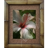"""White hibiscus"" Nice close up photograph of a white with red center Hibiscus flower. Matted in a Natural Grass Mat and framed in a handmade Natural Bamboo Frame. Bamboo Frame is hand sanded and stained twice. Made in California, USA. Dimensions;..."