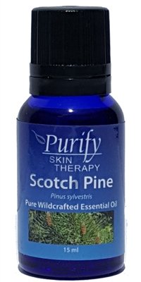 100% Pure Premium Grade, Wildcrafted Scotch Pine Essential Oil by Purify Skin Therapy