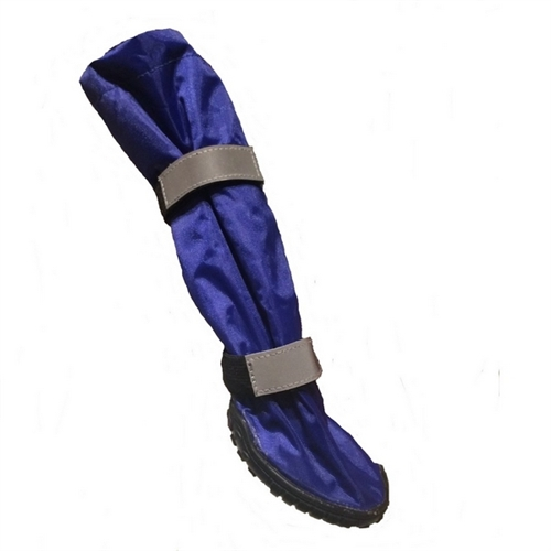 huge selection of outlet store outlet store Hi-Toppers - Blue