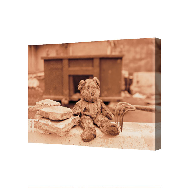 """The Muddy Teddy Bear"" Canvas 24 in. x 36 in."