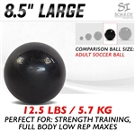 Si Boards 8.5 inch Large ball
