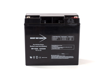 Bright Way Group BW 12220 IT 22Ah 12V (@10hr) AGM Sealed Lead Acid Battery