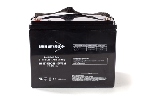 Bright Way Group BW 12750 DT (Group 24) 75Ah 12V (@10hr) AGM Sealed Lead Acid Battery