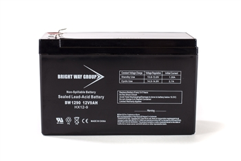 Bright Way Group BW 1290 F2 9Ah 12V (@10hr) AGM Sealed Lead Acid Battery