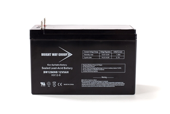 Bright Way Group BW 1290 NB 9Ah 12V (@10hr) AGM Sealed Lead Acid Battery