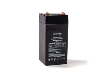 Bright Way Group BW 445 4.5Ah 4V AGM Sealed Lead Acid Battery
