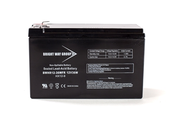 Bright Way Group BW HR 12-36W FR 9Ah 12V (@10hr) AGM Sealed Lead Acid Battery