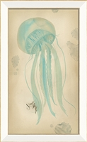 Jellyfish (3 color options)