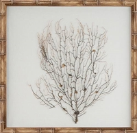 framed wall art natural bamboo sea fan oyster linen