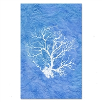 paper print wall art sea black coral nautical framed