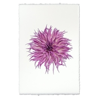 photography flower purple handmade paper