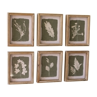 set 6 white fern wall art green background natural wood frame white wash glass