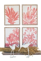 set 4 coral watercolor art prints wood frame nautical rope-like