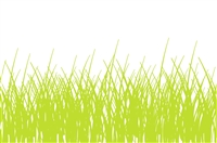 plat du jour grass green white disposable placemat pad 50 sheets paper soy-based ink entertaining recycled