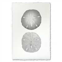 photography art blue handmade sand dollar two